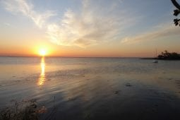 Le Parc national d'Iberá, sentiment de bien-être assuré
